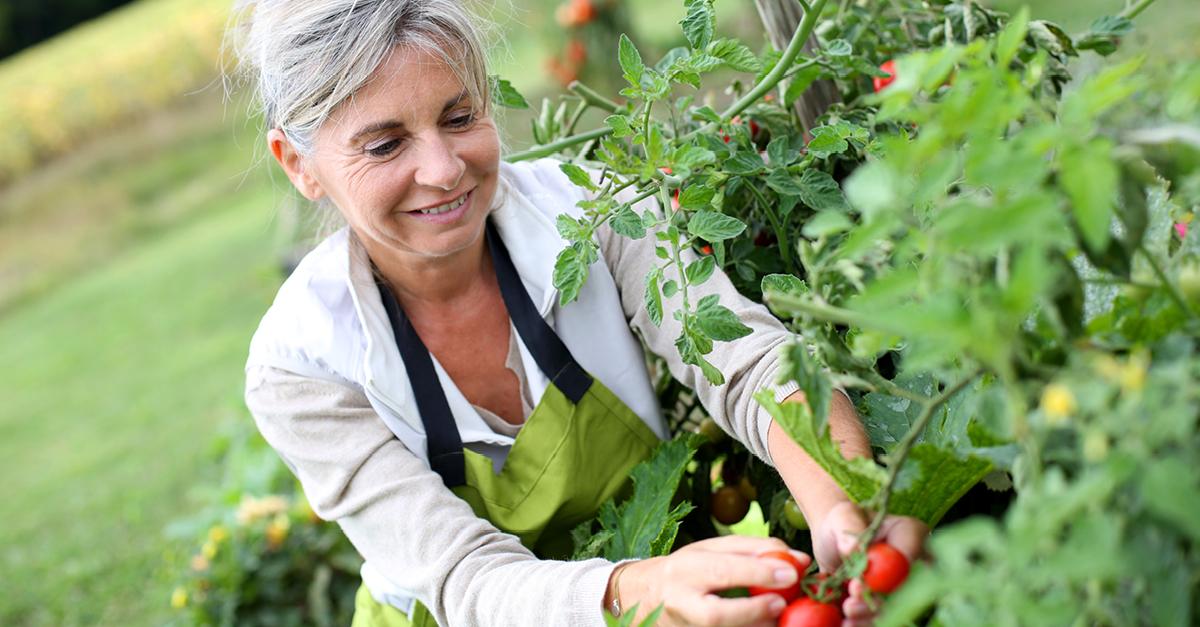 Olvídate de las dietas en la menopausia